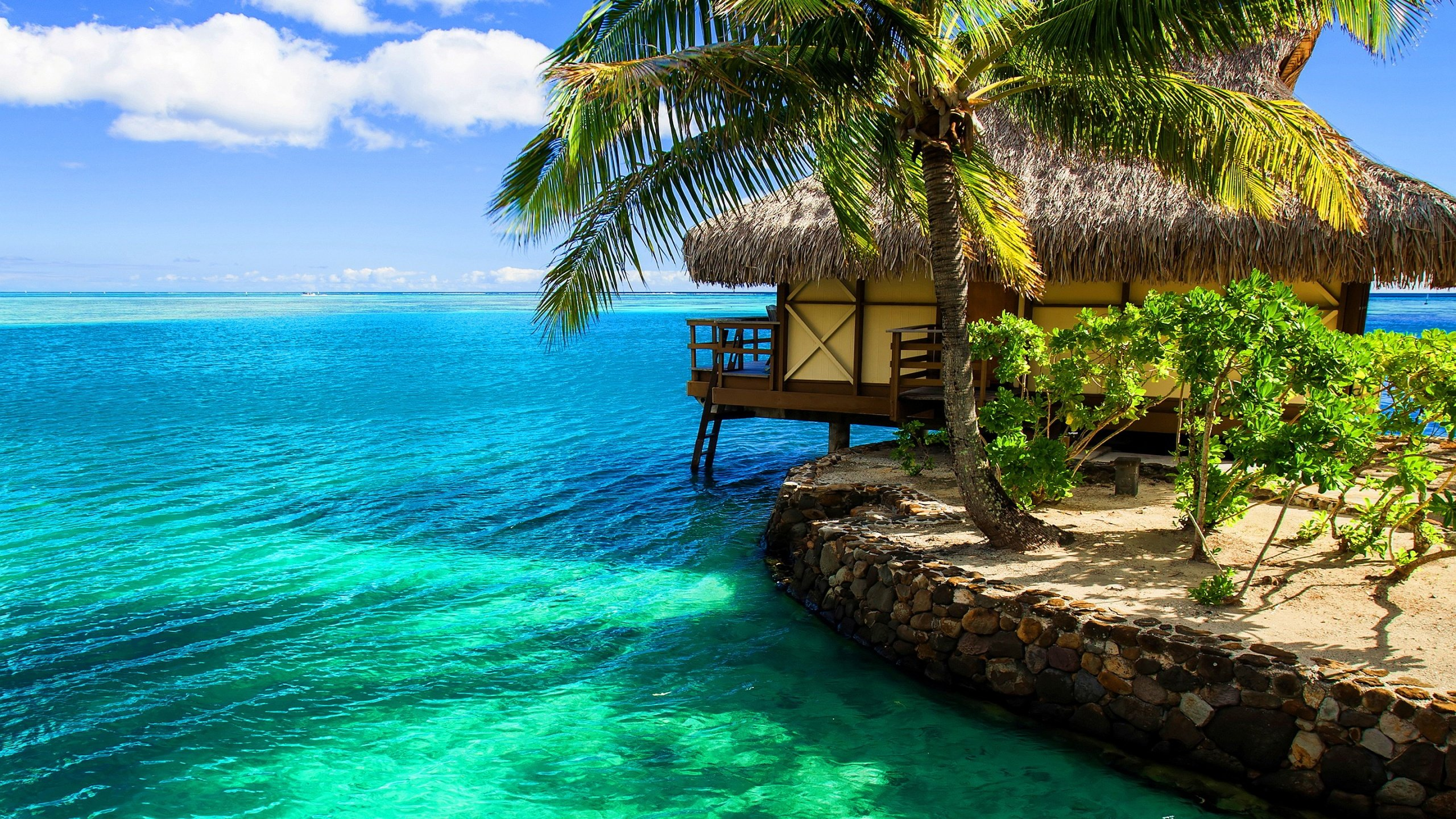 Nature Amazing Pics Hd Wallpapers Desktop Backgrounds Images Beach Resort Wallpaper Mojly